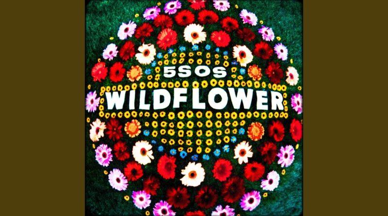 Wildflower Lyrics